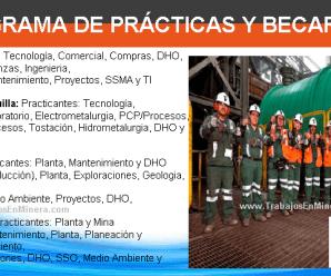 Programa de Prácticas y Becarios en Minera Milpo (Nexa)